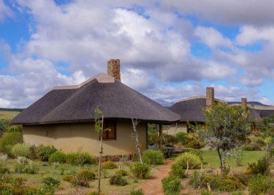 Amathunzi-Game-Lodge-6
