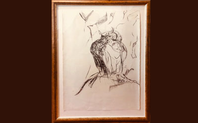 Spotted Eagle Owl Charcoal drawings nr 2 by Stephen Rautenbach – Framed